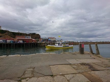 Whitby 0005